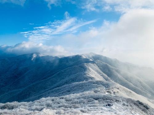 [카메라뉴스] 3cm 눈 내린 소백산 연화봉 일대