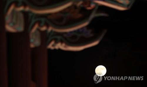 [#꿀잼여행] 강원권: 여행으로 보듬는 산불 상처…오색 달빛 쏟아지는 강릉
