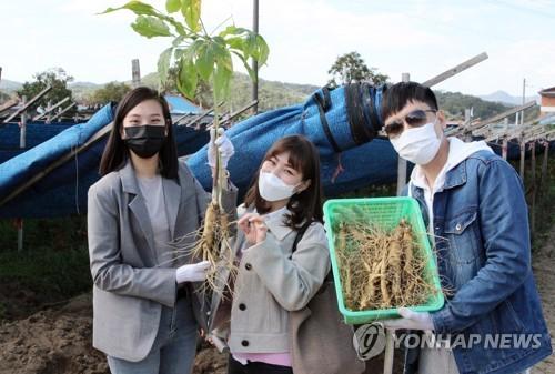 제39회 금산인삼축제 개막…온라인 위주로 열흘간 열려