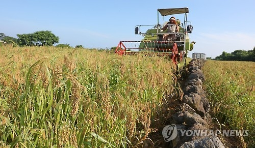 Rice production forecast to fall 2.9 pct in 2016: data - 1