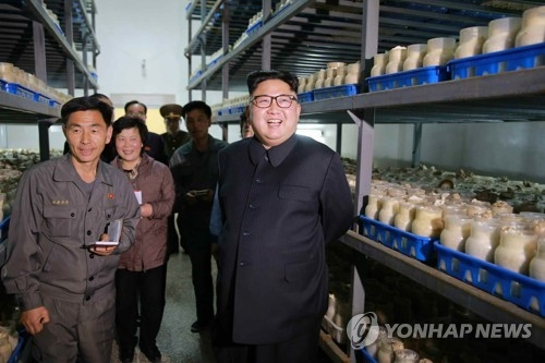 This photo, carried by North Korea's main newspaper Rodong Sinmun on April 8, 2017, shows North Korean leader Kim Jong-un inspecting a mushroom farm on the outskirts of Pyongyang. (For Use Only in the Republic of Korea. No Redistribution) (Yonhap)