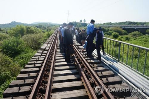 This photo, provided by South Korea's unification ministry on July 24, 2018, shows officials from the two Koreas checking the North Korean side of the western Gyeongui railway. (Yonhap)