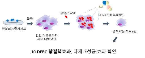 This image provided by KCDC shows the how the 10-DEBC substance is effective in combating TB. (PHOTO NOT FOR SALE) (Yonhap)