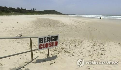상어 출몰로 폐쇄된 호주의 한 해변