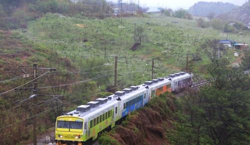경북 나드리 열차