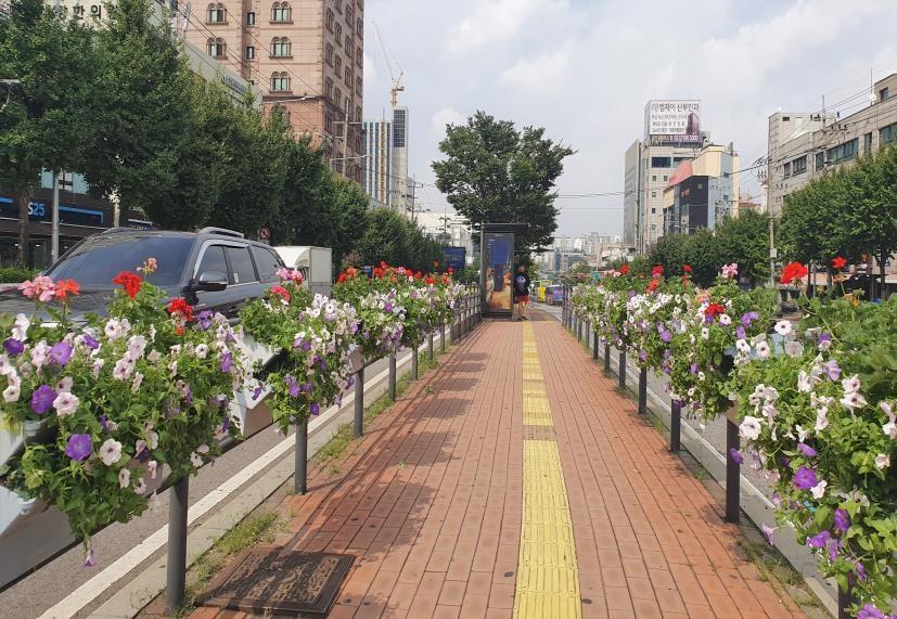 서울 금천구가 시흥대로에 설치한 가을철 걸이화분