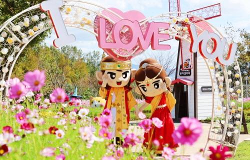 김해가야테마파크, 가을 맞이 '코스모스 축제와 가을 타자' 개최 - 1