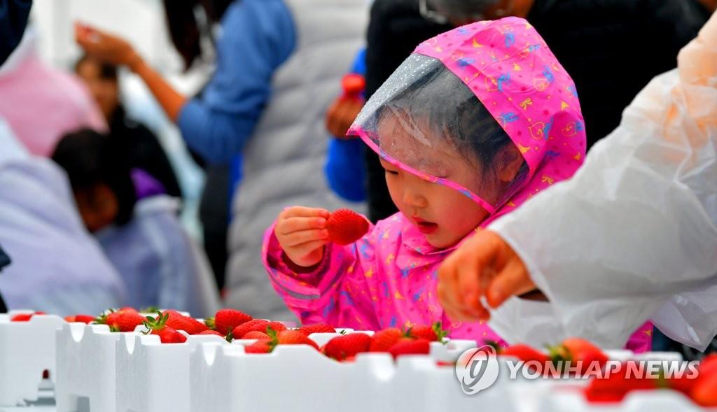 """""""맛있는 딸기 먹어요"""""""