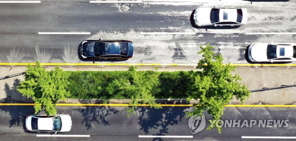 `도로 열기 식히는 클린로드 물줄기`