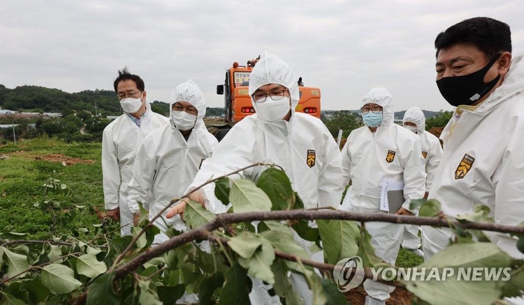 허태웅 농촌진흥청장, 과수농가 과수화상병 점검